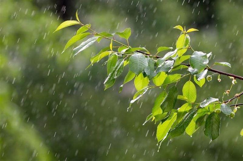 Прогноз погоды по Казахстану на воскресенье, 25 августа