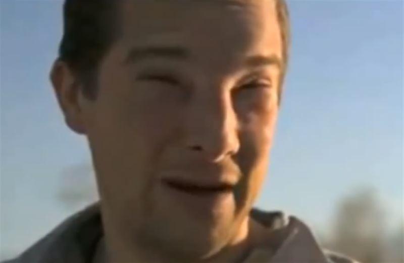 Британский телеведущий едва не скончался от укуса пчелы