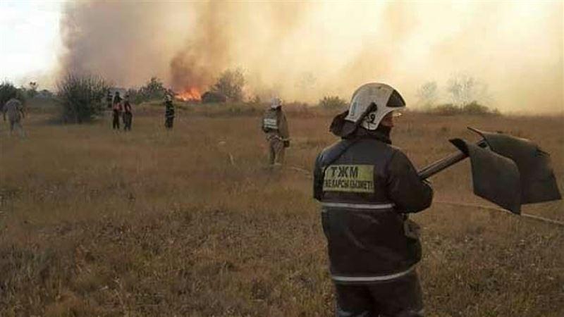 Огонь уничтожил более 700 дач в Темиртау