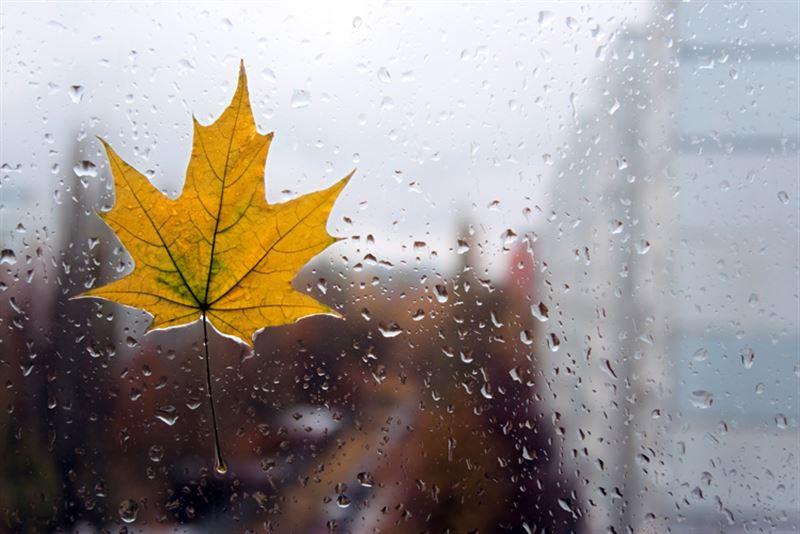 Какая погода будет в Казахстане в пятницу, 6 сентября