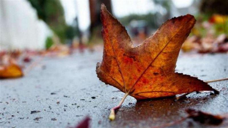 Какая погода ожидает казахстанцев в четверг, 12 сентября