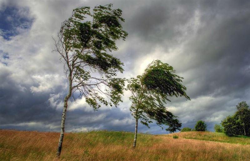 Прогноз погоды по Казахстану на субботу, 14 сентября
