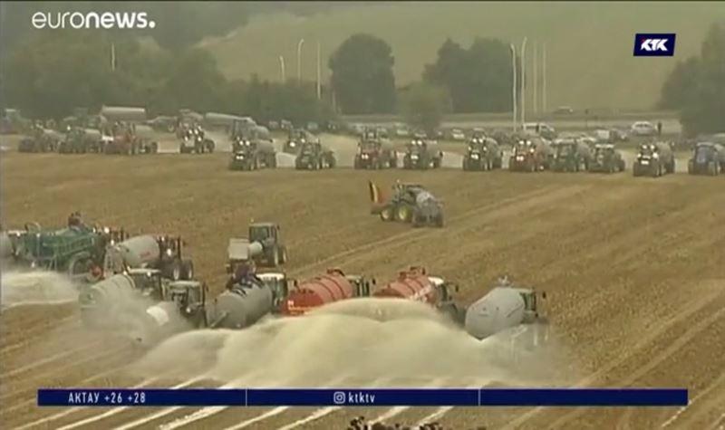 Фермеры вновь заливают поля молоком