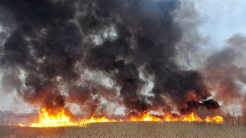 Четвертые сутки тушат пожар в Абайском районе ВКО