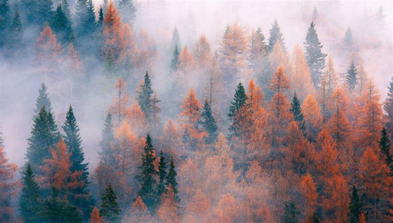 Неустойчивый характер погоды прогнозируют в Казахстане 15 октября