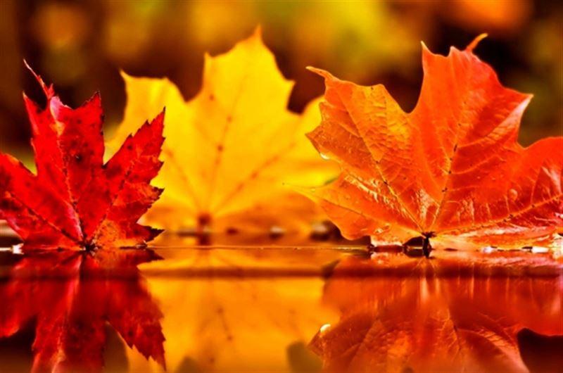 Какая погода будет в Казахстане в среду, 16 октября