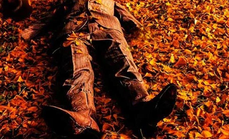 Тело пропавшего мужчины найдено в лесу Петропавловска