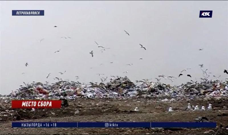 Петропавловск на грани мусорного коллапса