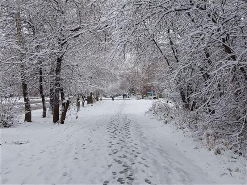 Первый снег выпал в ВКО