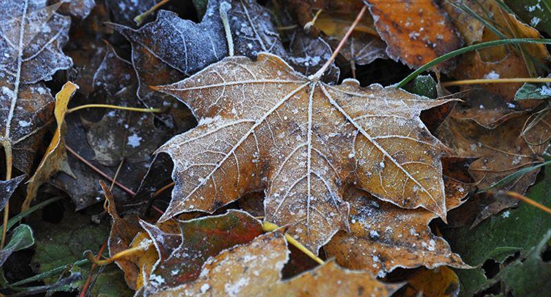 Местами по стране усилится ветер во вторник, 22 октября