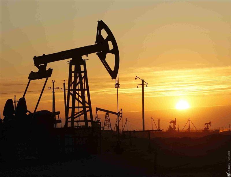 Стало известно, когда Казахстан увеличит объем добычи нефти