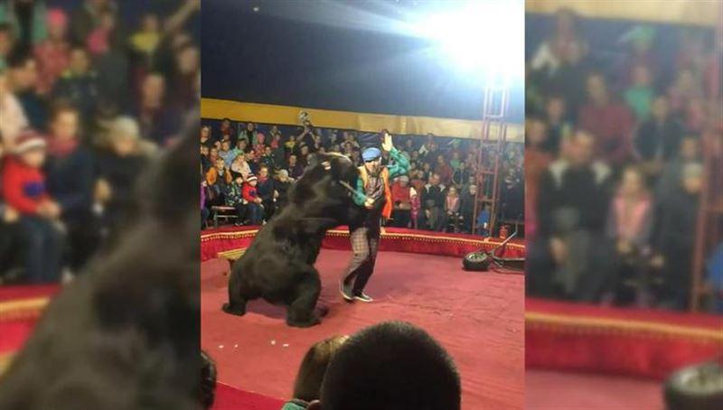 Медведь напал на дрессировщика во время выступления