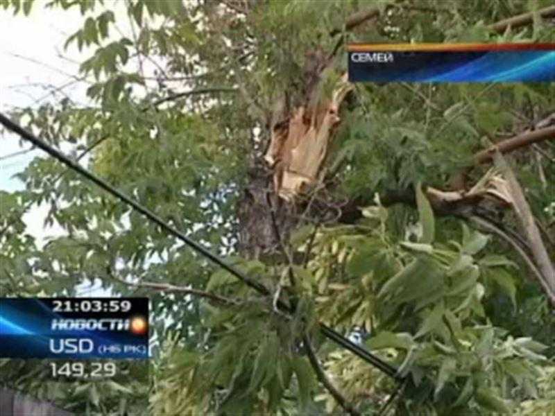 В Семее подсчитывают ущерб от урагана