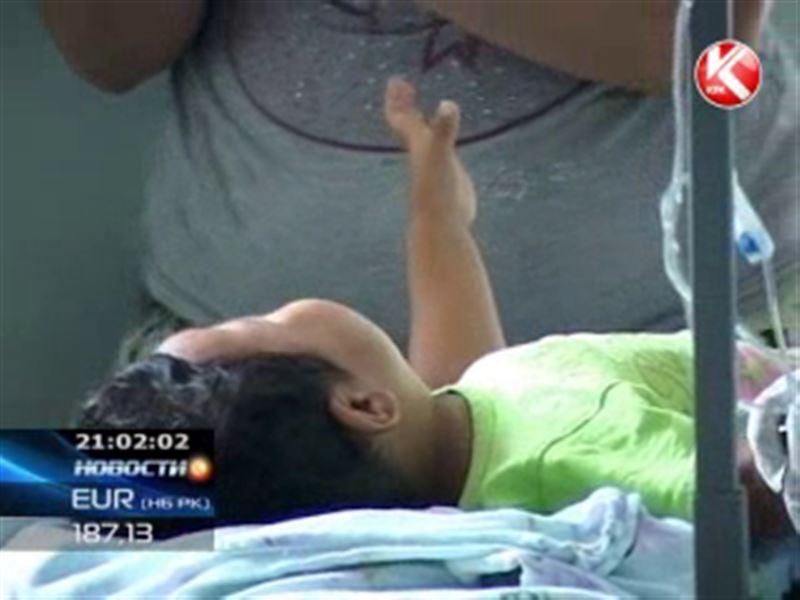 Массовое отравление детей в Алматинской области вызвала дизентерийная палочка