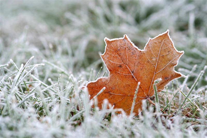 Какая погода будет в Казахстане в субботу, 2 ноября