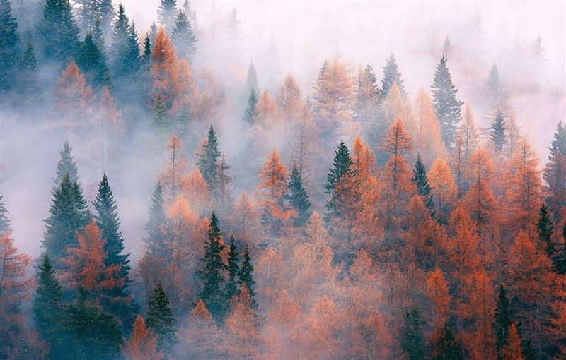 Прогноз погоды по Казахстану на субботу, 9 ноября