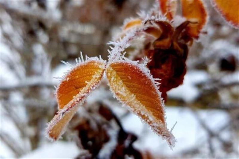 Прогноз погоды по Казахстану на понедельник, 11 ноября