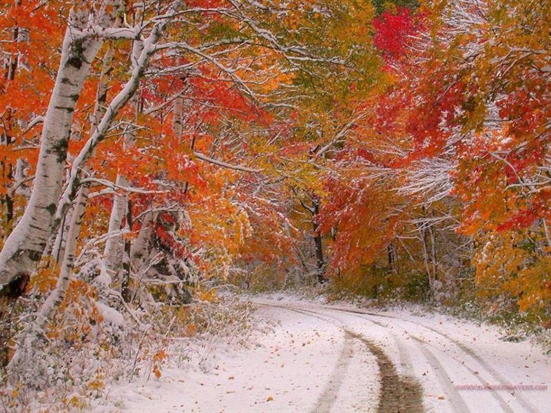 Прогноз погоды по Казахстану на четверг, 14 ноября