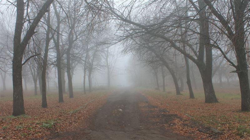 Прогноз погоды по Казахстану на понедельник, 18 ноября