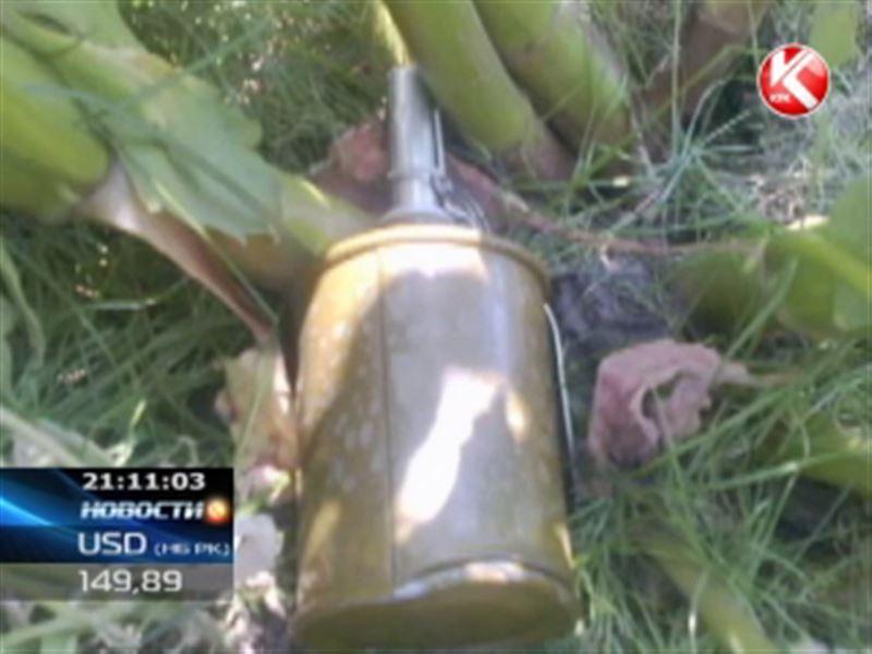 В Экибастузе во двор дома подкинули боевую гранату