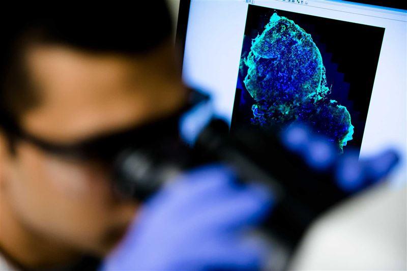 Ученые рассказали о сопротивляемости рака
