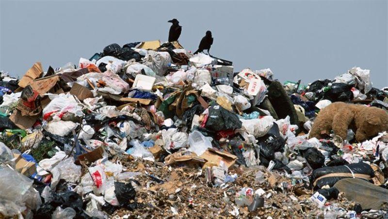 В республике собираются получать электричество из мусора