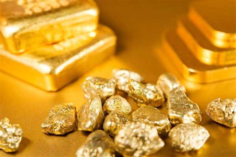 Мужчина получил условный срок за хранение найденного золота