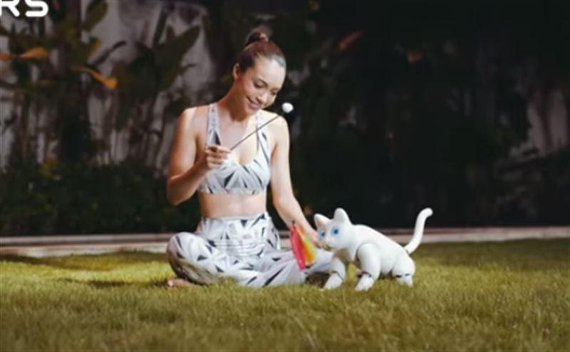 Робота-кошку, способную выражать эмоции, создали ученые Китая