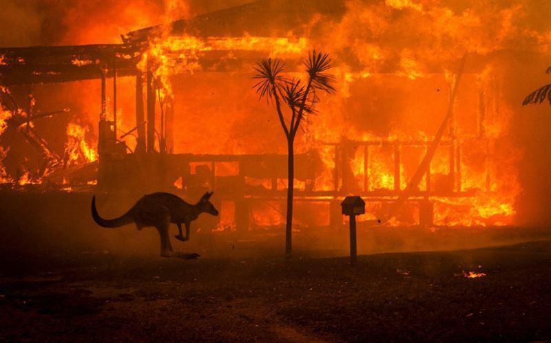 Австралия направит 3000 военных на тушение пожаров
