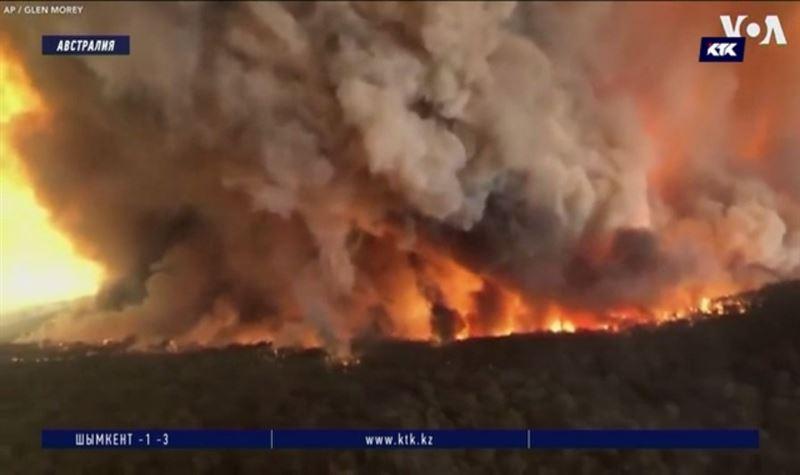 Природные пожары в Австралии приобретают характер катастрофы