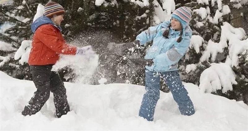 Водитель открыл стрельбу по детям из-за снежка