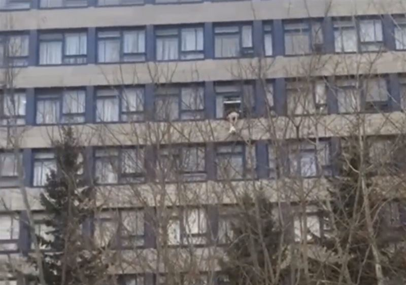 Көкшетауда студент университеттің 6-шы қабатынан секіріп кетті
