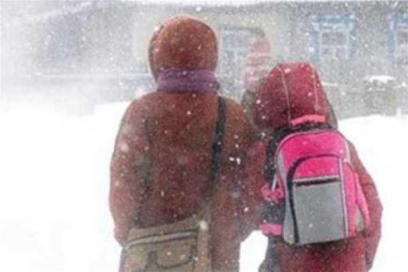 Занятия для школьников и студентов отменили в столице