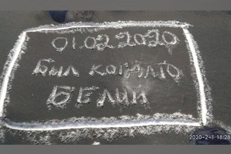Экология министрлігі Теміртаудағы қара қарды анықтауды тапсырды