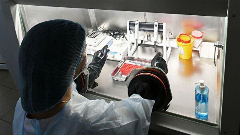 Казахстан получил тесты для определения коронавируса