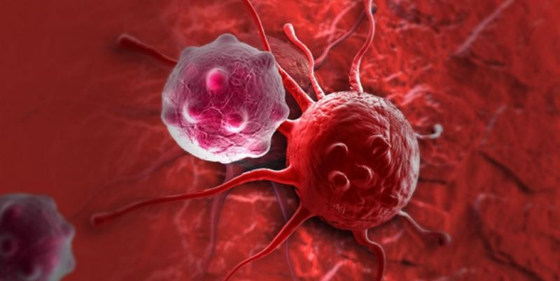 Ученые нашли способ остановить рост раковых опухолей
