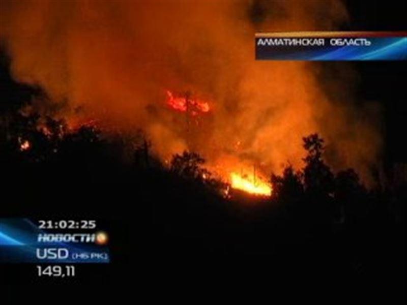 Лесной пожар в заповеднике близ Алматы ликвидирован