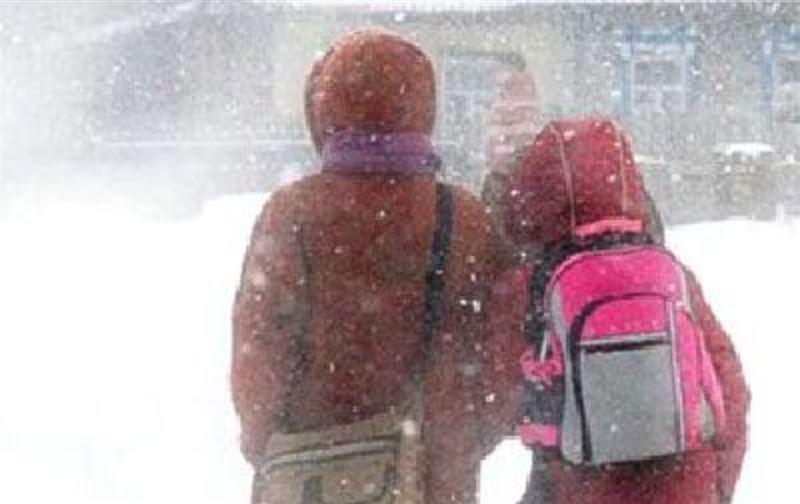 В Нур-Султане из-за метели отменили занятия для учащихся второй смены