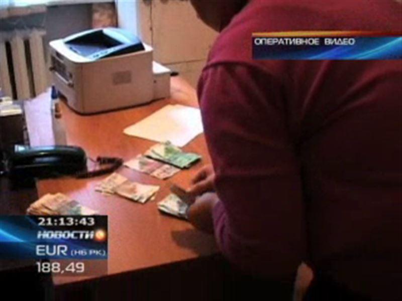 В Петропавловске задержали мошенницу, которая торговала местами в детском саду
