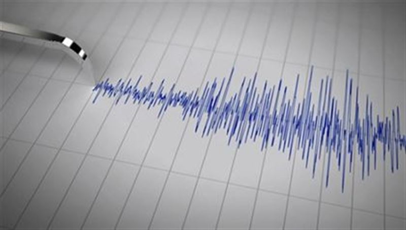 Землетрясение ощутили в Шымкенте и Таразе