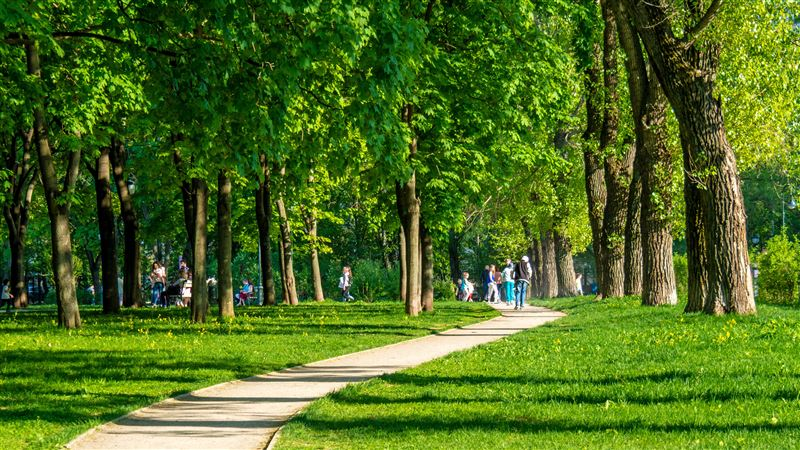 В Нью-Йорке погибших от коронавируса начнут временно хоронить в парках