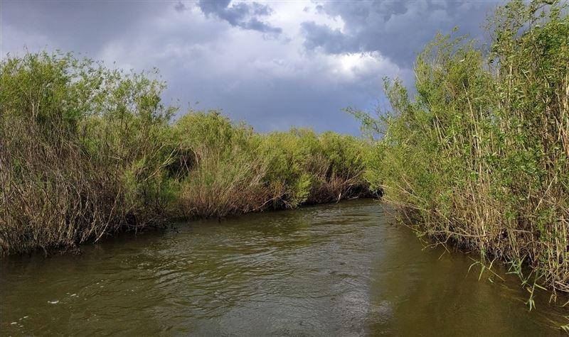Мужчина на внедорожнике застрял в реке, пытаясь покинуть Нур-Султан