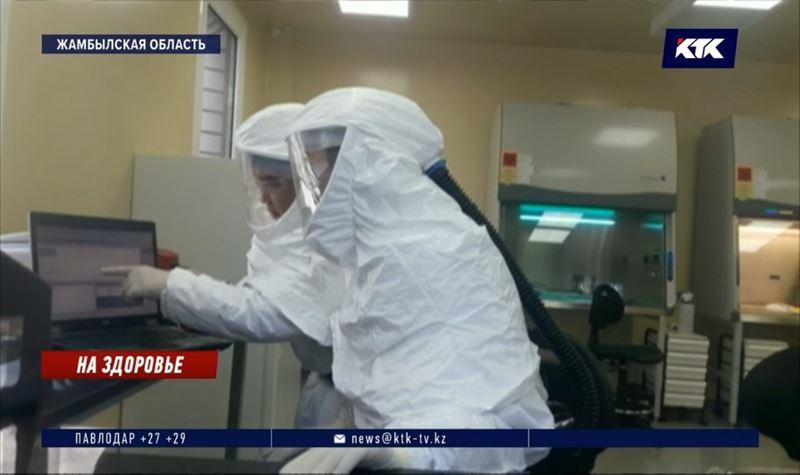 Животные первыми испытают на себе казахстанскую вакцину от COVID-19