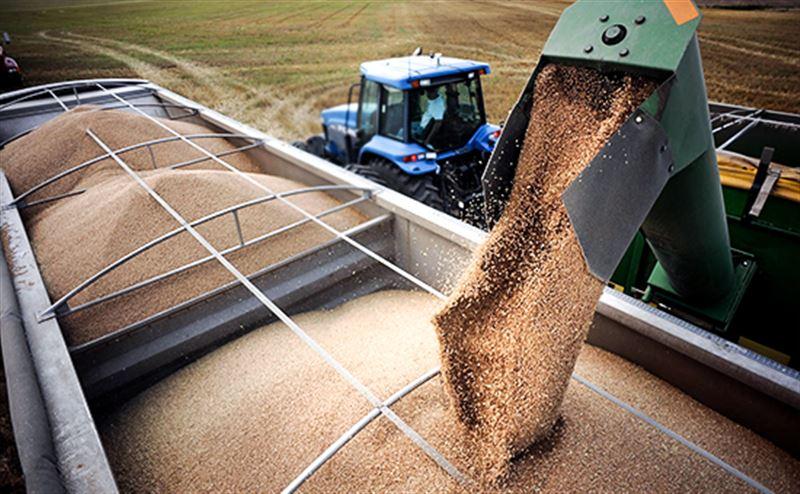 Казахстан снимет все ограничения на экспорт сельхозпродукции с 1 июня