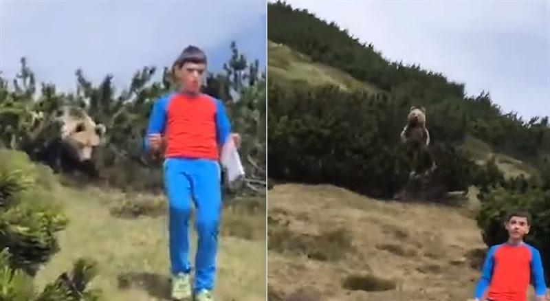 В Италии сняли на видео, как в лесу медведь преследовал мальчика