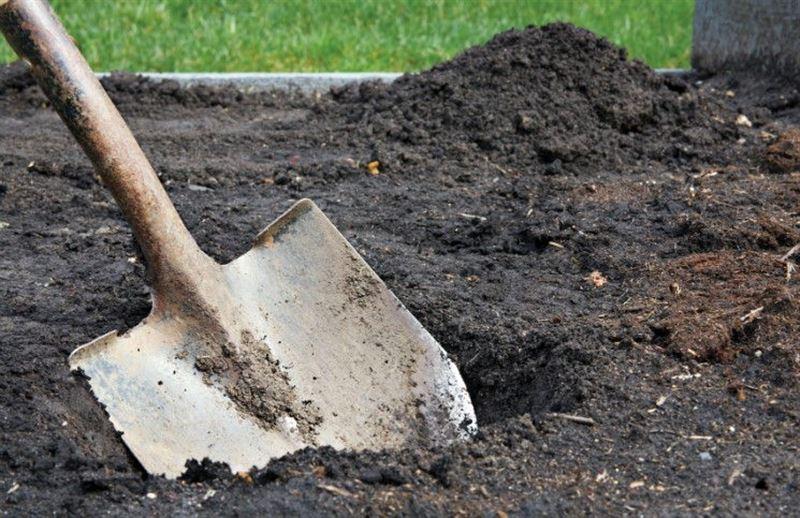 Погребенный заживо мужчина выбрался из могилы