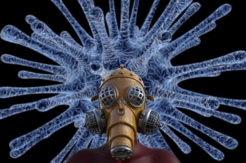 Новый штамм свиного гриппа может стать причиной очередной пандемии
