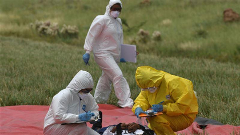 Угрожает ли Казахстану выявленная в Монголии и Китае чума
