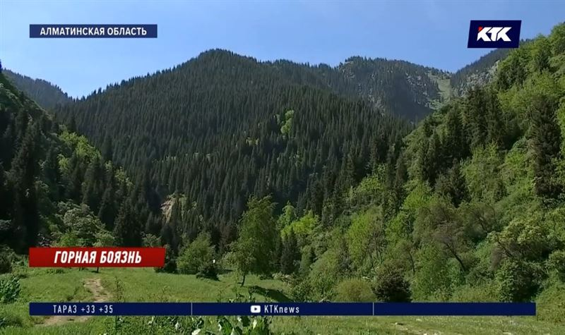 В будние дни горы Алматы будут доступны лишь пешим туристам и велосипедистам
