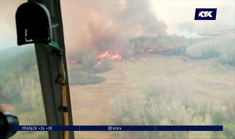 Лесной пожар в ЗКО пока не удается ликвидировать